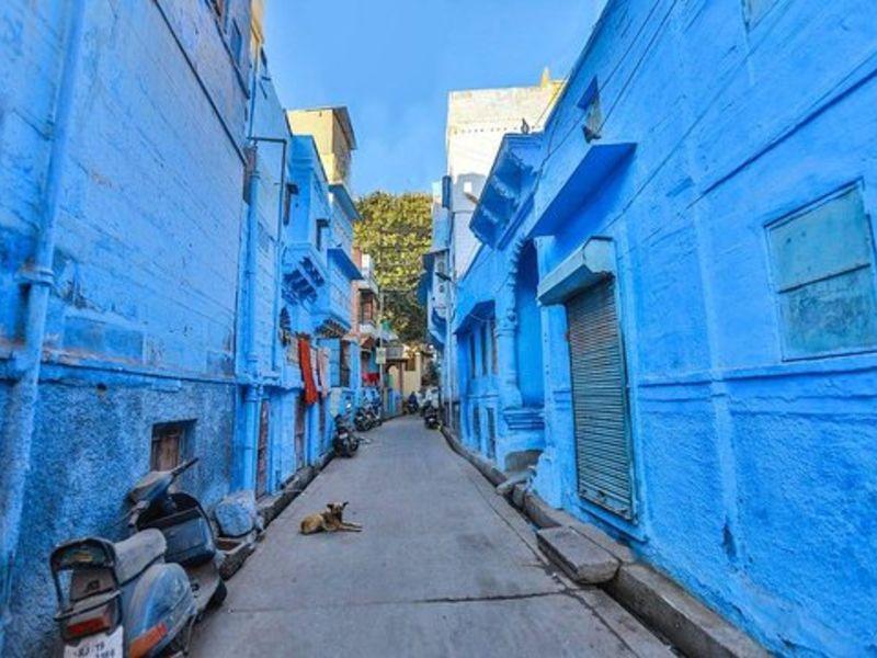 Blue City –  Jodhpur, Rajasthan
