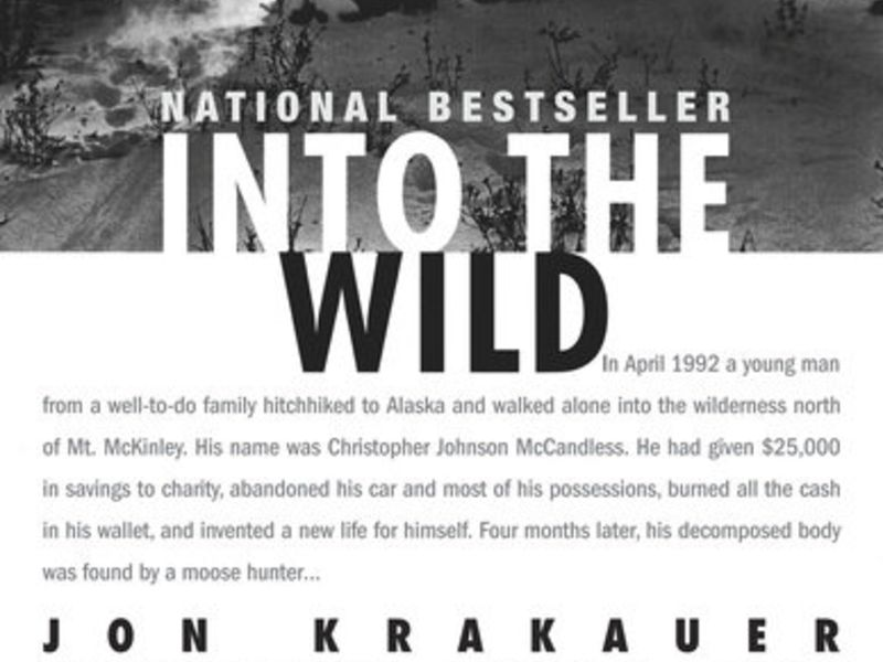 Into The Wild - 10 Books That You Have To Read While You Are Traveling In India.