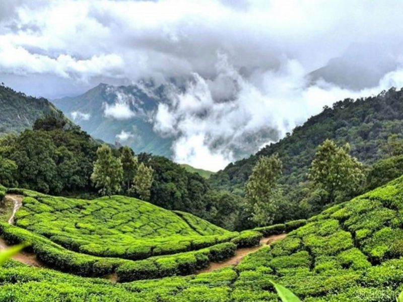 Munnar – Thekkady, Kerala - Best Places To Visit In India In Summers.